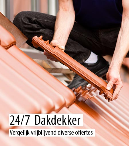 Dakdekker Zuid-Holland